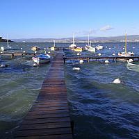 Pointus de la lagune du Brusc durant la tempête Fabien